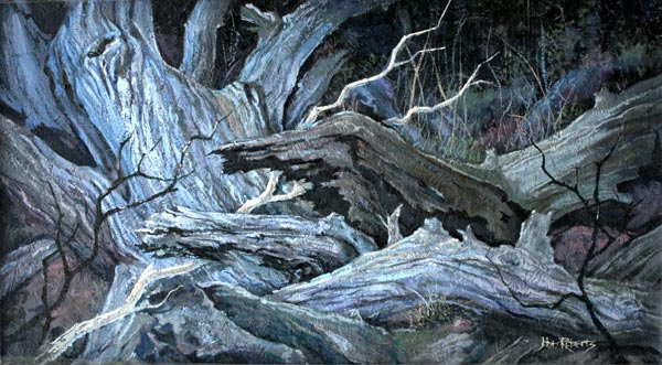 John Roberts - Driftwood